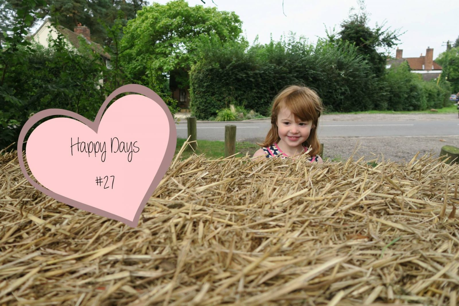 Parties, Play Dates and Baking…Happy Days #27