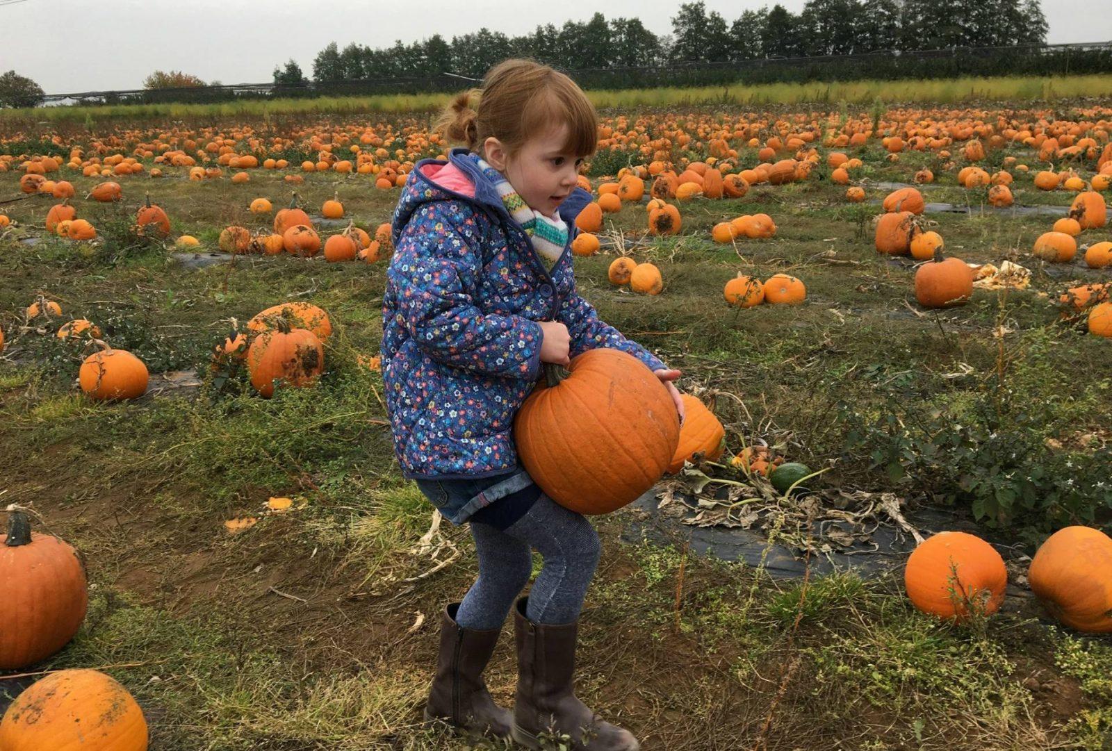 alice-carrying-pumpkin