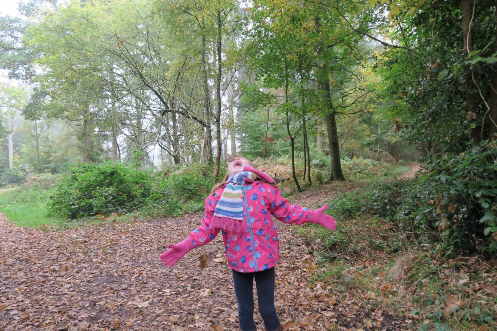 Saying Hello to Autumn with Coats from Lighthouse…