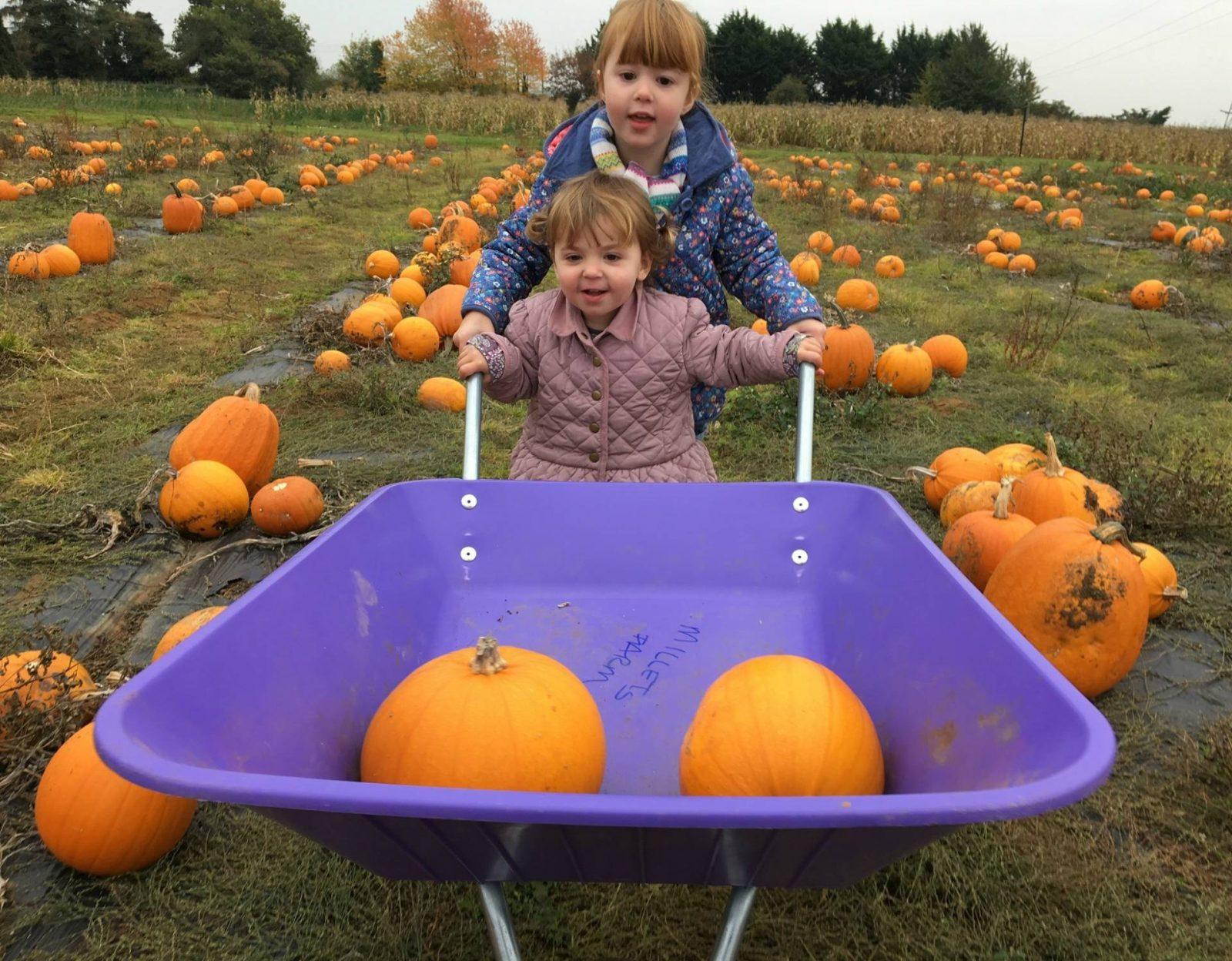 girls-pushing-wheelbarrow