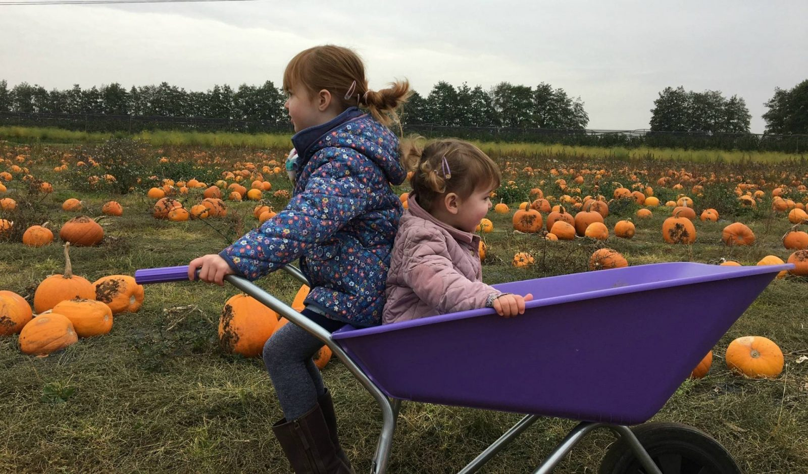 girls-sat-wheelbarrow