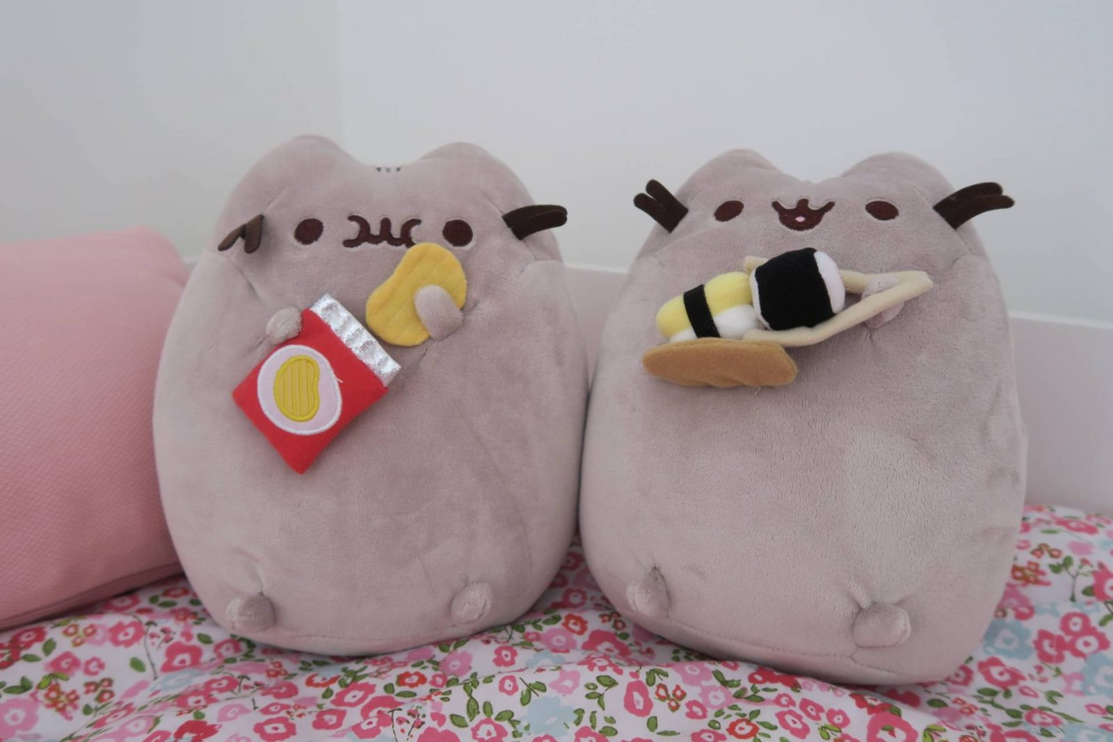 Falling In Love With Pusheen…