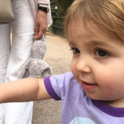 Chessington World Of Adventures For Toddlers…